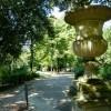 Il Boschetto a Firenze: alla scoperta del parco di Villa Strozzi