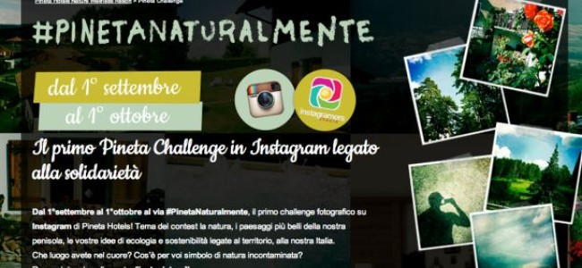 #PinetaNaturalmente: contest fotografico su Instagram tra natura e solidarietà