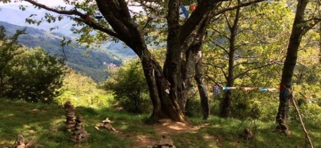 Orsigna e il sentiero di Tiziano Terzani
