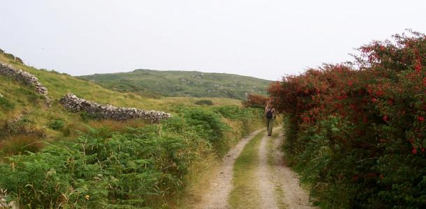 Connemara, Irlanda