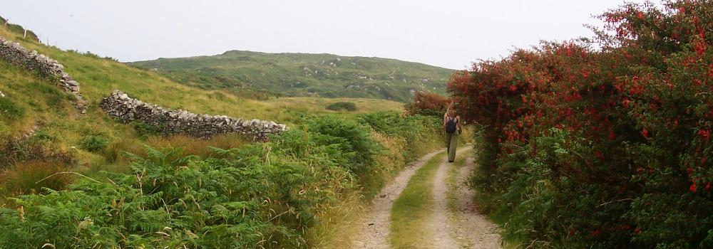 Reporte in Viaggio in Irlanda