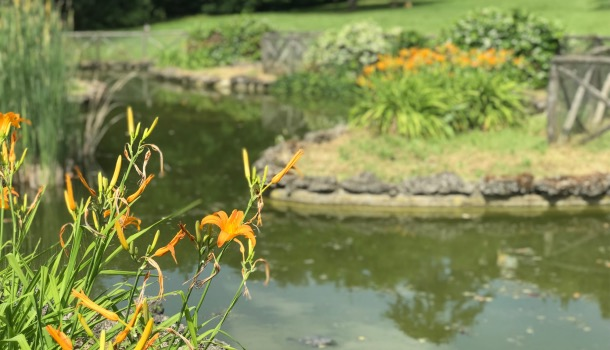 lago del parco di villa il ventaglio