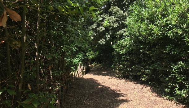 sentieri del parco di villa il ventaglio