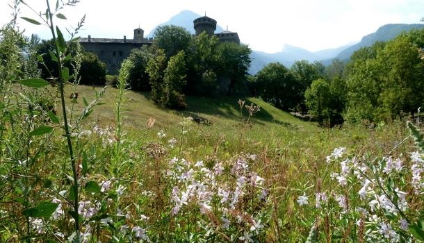 Castello di Fenis_veduta