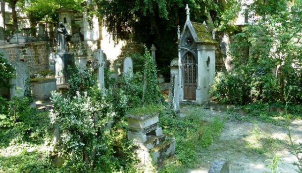 pere lachaise tombe e vegetazione