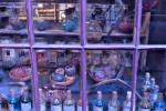 Erbe e Pozioni - WB Studio Tour London