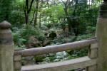 Parco Yoyogi a Tokyo