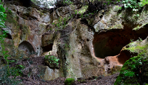 Parco archeologico Sovana