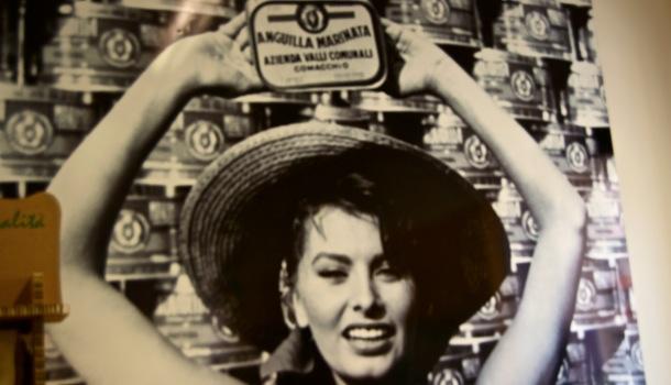 Sofia Loren e anguilla marinata