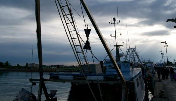 pescherecci a porto garibaldi