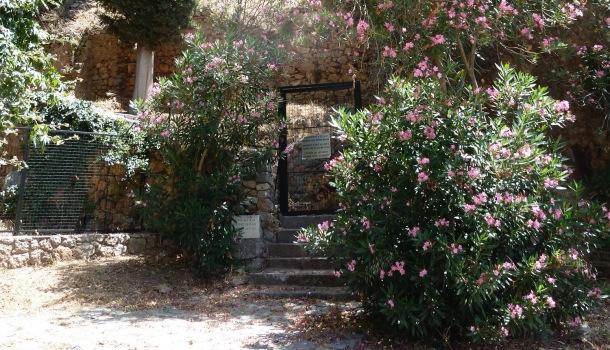 cancello per salire alla fonte tarda