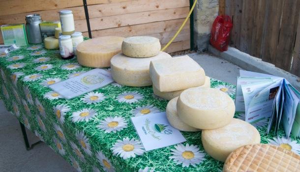 formaggi e yogurth maso engher
