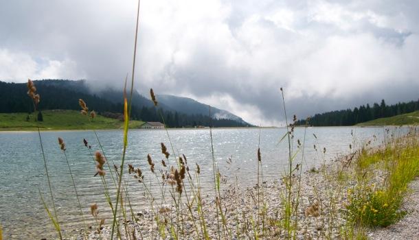 lago coe