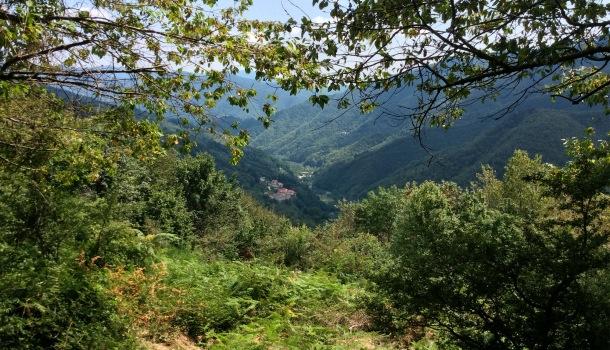 valle dell'orsigna