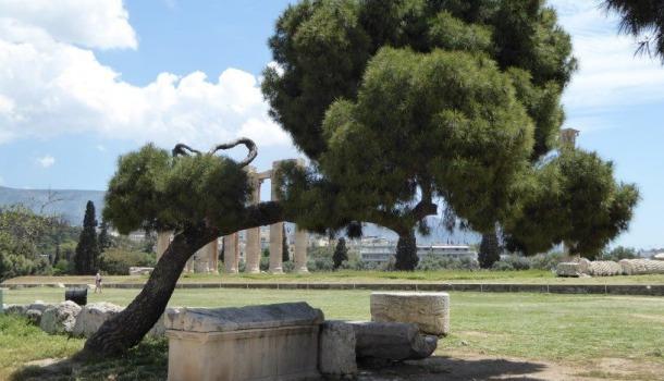 antica agora atene_Alessandra Malatesta