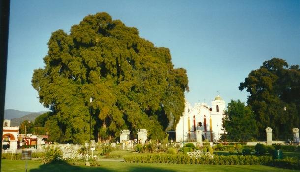 el thule e chiesa di santa maria