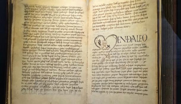 Vercelli book