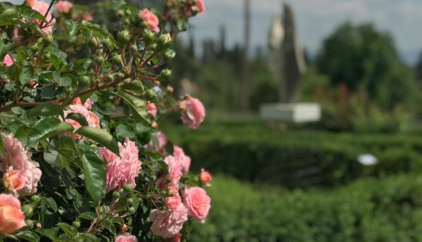 giardino di villa salviati