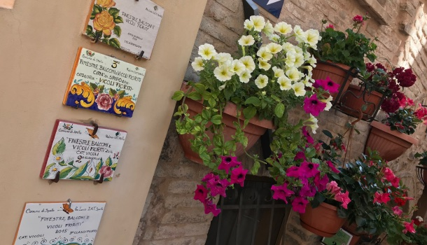 balconi fioriti a spello