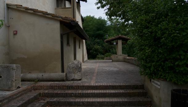 antiquarium necropoli del palazzone