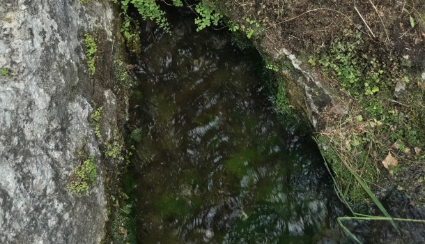 acqua sorgiva del clitunno